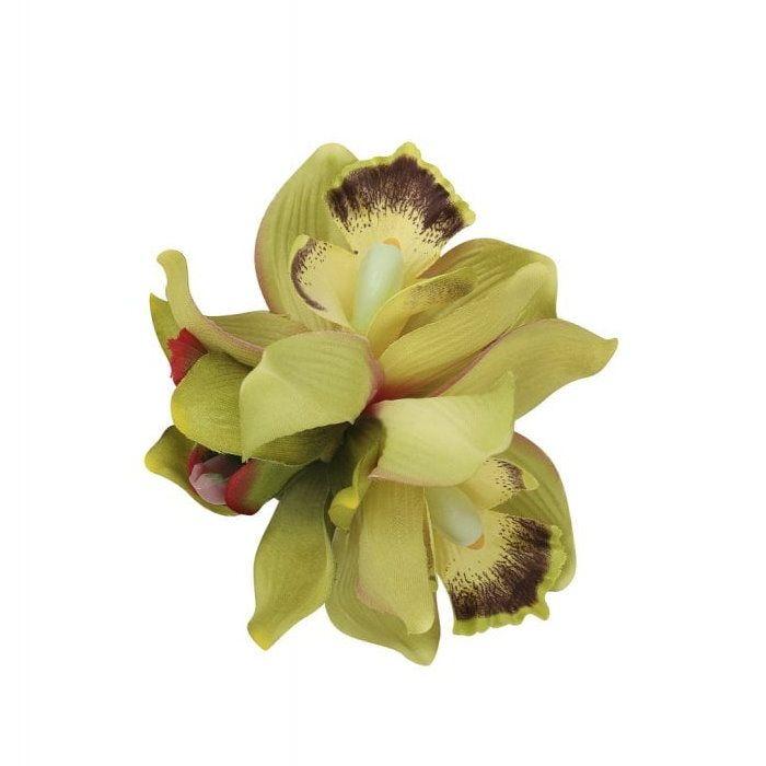 Hiuskukka, AALIYAH ORCHID Lime