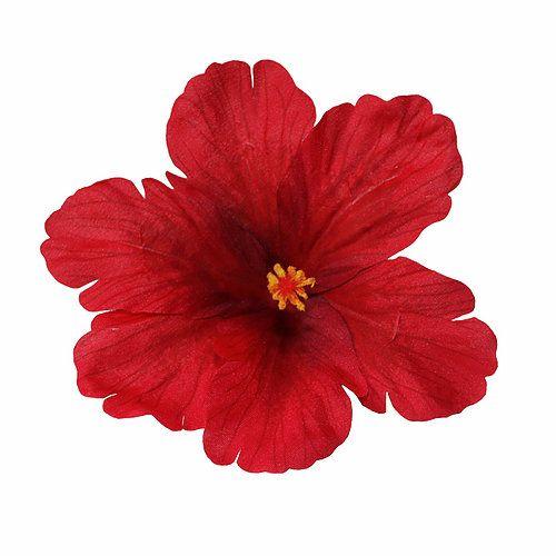 Hiuskoriste LL, DEBRA Hibiscus Red