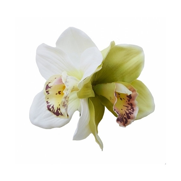 Hiuskoriste, GINGER Double Green/Cream Orchid