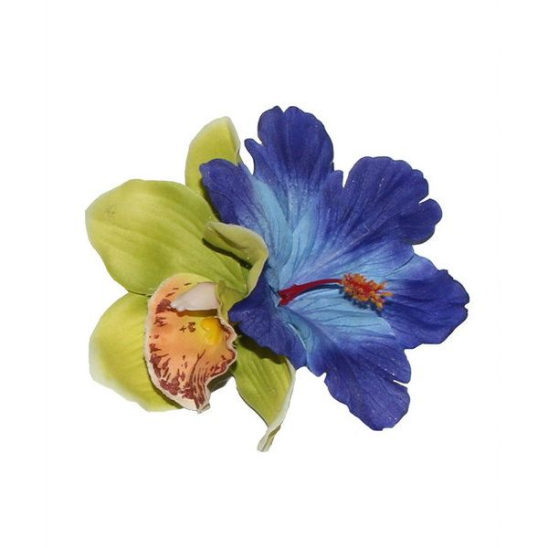 Hiuskoriste, IZABELA Green/Blue